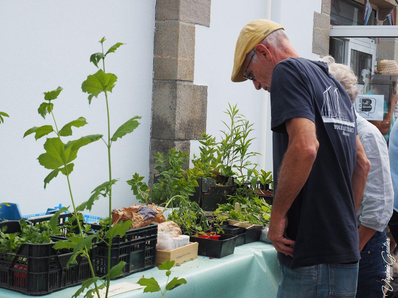 5 Echange plantes (2)